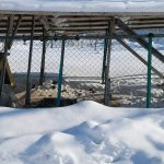北海道 2月 釧路・川湯温泉・網走の旅 その4