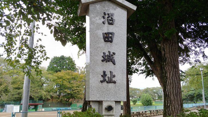 日本のお城100選のレビュー 群馬県、沼田城(城跡)