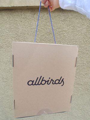 オールバーズ allbirds  履き心地のレビュー。晴れや雨の日、他の靴の比較等いろいろ評価
